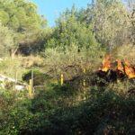 En un moment semblava que el l'incendi es podia propagar però els bombers han controlat la situació en breus minuts // Jose Polo