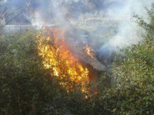 L'incendi s'ha declarat en una zona boscosa propera al dipòsit d'aigua // Àlex Maymó