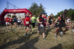 La cursa va aplegar a 500 participants // Ajuntament de Molins de Rei