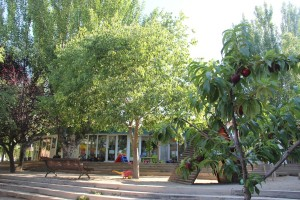 La llar d'infants El Rodó està envoltada de natura per totes bandes // Jordi Julià