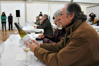 Una cinquantena de persones van participar en un tast de vins de la DO Tarragona el dissabte al migdia // David Guerrero