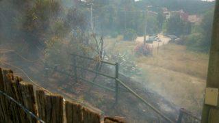 Imatge de la zona que s'ha cremat // cedida per veïns a Viu Molins de Rei