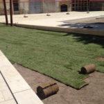 Les obres del pati del Palau estaran acabades a finals de juliol