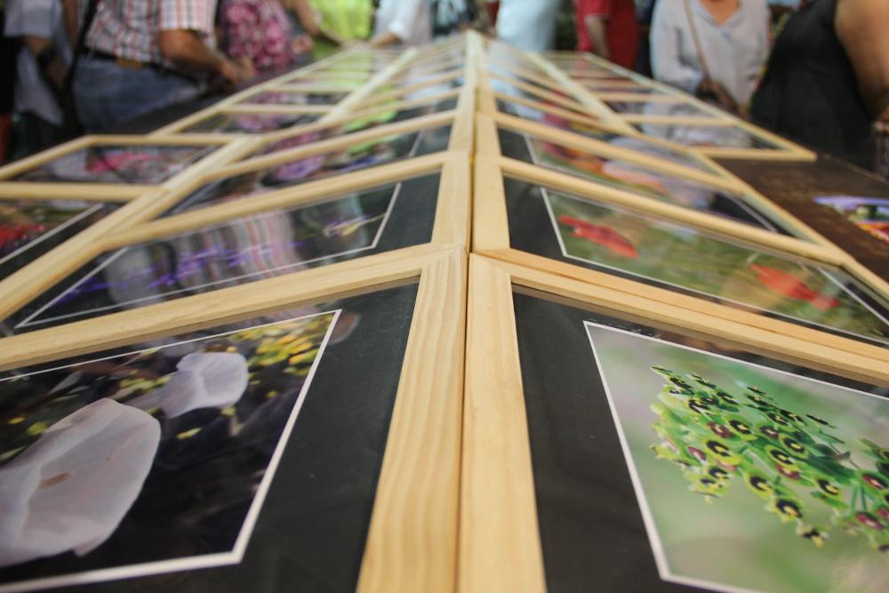 L'exposició efímera es va poder veure a l'obrador de Valls Flors durant dues hores // Jordi Julià