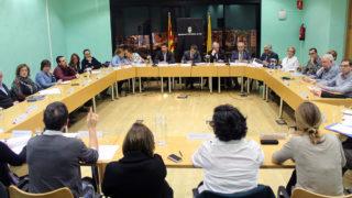 Un plenari del Consell al 2014 // Jose Polo