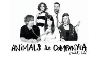 cartell Animals de Companyia