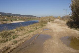 Estat actual del camí del riu de Molins de Rei // Ajuntament de Molins de Rei