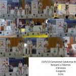 El judo de Molins de Rei  suma 10 medalles al Campionat de Catalunya