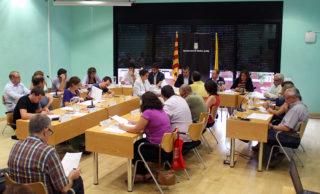 Ple Municipal Juny Molins de Rei 2015