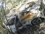 El cotxe va travessar una pista forestal fins ser frenat per l'arbrat de la zona // ADF Puigmadrona-Olorda