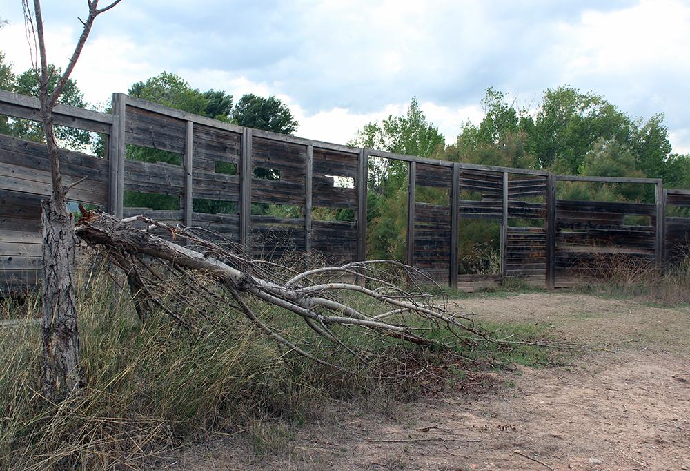 Un dels miradors de fusta deteriorat acompanyat d'un arbre trencat // Jose Polo