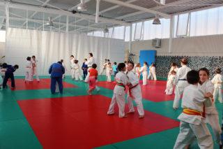 Els petits del Club Judo Molins de Rei a la Zona Esportiva Ricard Ginebreda // Jose Polo