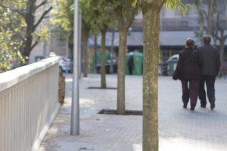 Imatge dels nous arbres del carrer bruc // Ajuntament de Molins de Rei