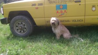 El veí de la Rierada ha trobat el cos sense vida de l'home i el seu gos al camí que va a El Papiol // ADF Molins de Rei