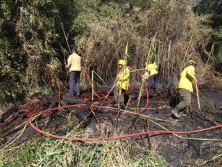 L'ADF actuant contra l'incendi // extreta del Twitter de l'alcalde Joan Ramon Casals