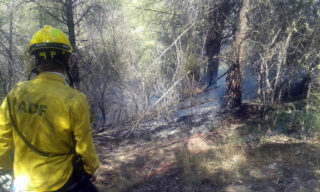Imatge de les maniobres contra el foc // ADF Puigmadrona - Olorda