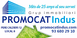 Promocatindus Fira Candelera 2017