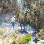 Un incendi a Can Campmany crema 250 metres quadrats de vegetació