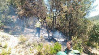 L'incendi ha cremat 250 hectàrees a Can Campmany // Pere Royo