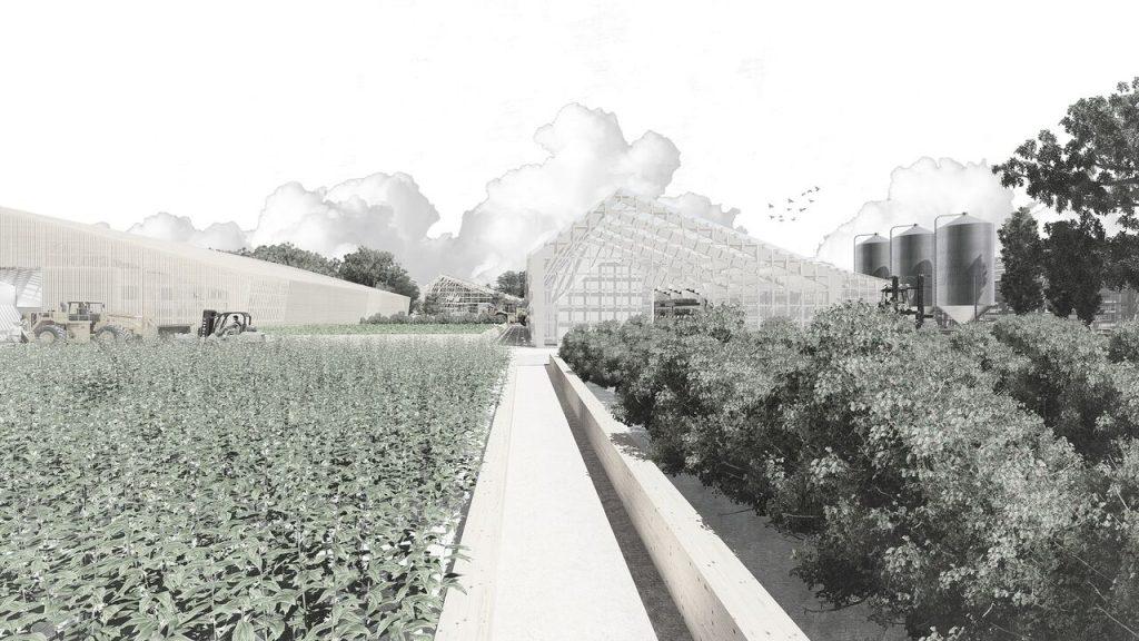 Urban Farm // Inés Casals
